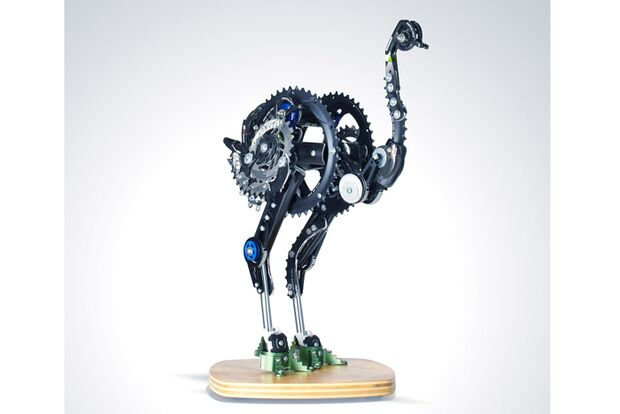 MB-Sram-Part-Project-2012-Ostrich-Rob-Millard-Mendez (jpg)