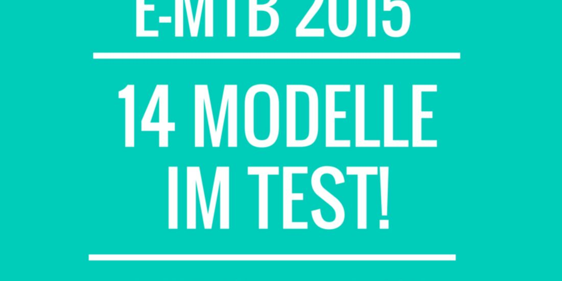 UB E-Mountainbike Teaserbild E-Bike-Test 2015